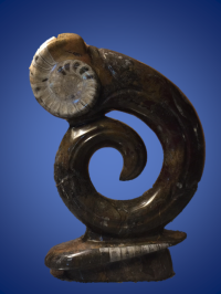 Fossil Sculpture - edited